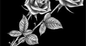 risunok-na-pamiatnik-zvety_1