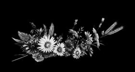 risunok-na-pamiatnik-zvety_10