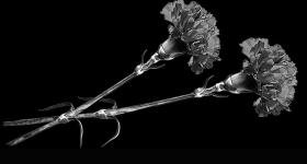 risunok-na-pamiatnik-zvety_18
