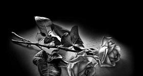 risunok-na-pamiatnik-zvety_23