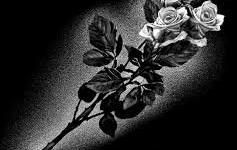 risunok-na-pamiatnik-zvety_27
