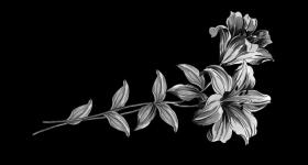 risunok-na-pamiatnik-zvety_3